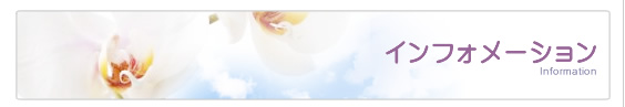 ペット 葬儀 火葬 リンク集